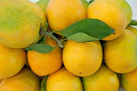 permutations: Fresh oranges Stock Photo