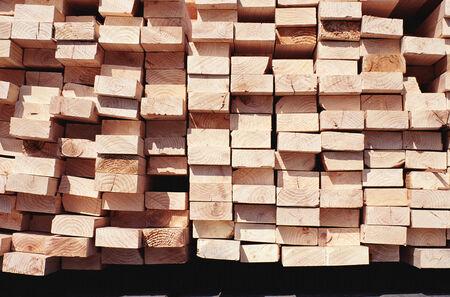 permutations: Wood, design material