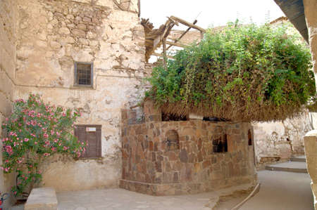 syn: The Monastery of St. Catherine in Sinai Peninsula - inside. The Burning Bush (Rubus sanctus, syn. sanguineus) on left side