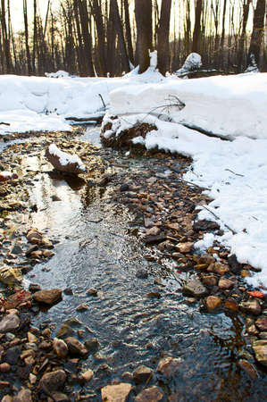 river in winter forest photo