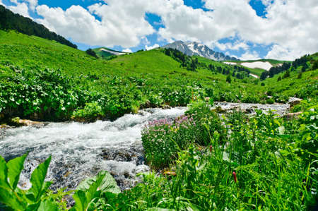 Summer landscape with green grass, mountains and river photo