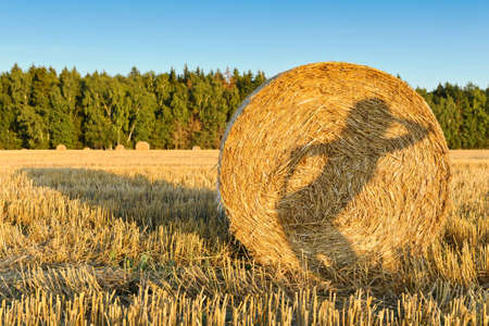 The photo shows a shadow of a girl on a haystack