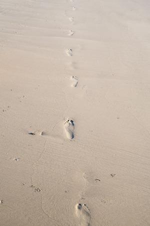 long way: Beauty long way footprint in the sand