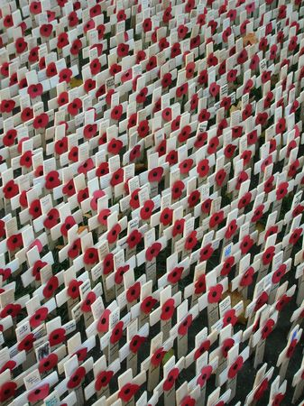 Memorial outside Londons Westminster Abbey for Remembrance Day. photo