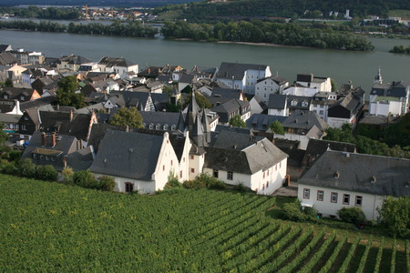 Vineyards and town center of Rudesheim, Germany.