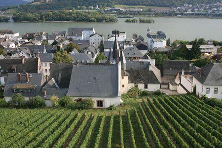 rudesheim: Vineyards and town center of Rudesheim, Germany.