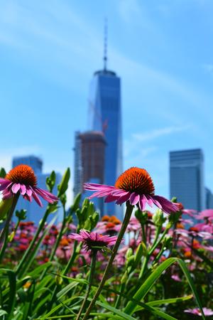 Hudson River Park in Lower Manhattan.