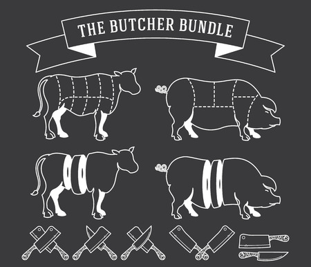 Vector butcher meat bundle for any use Vector