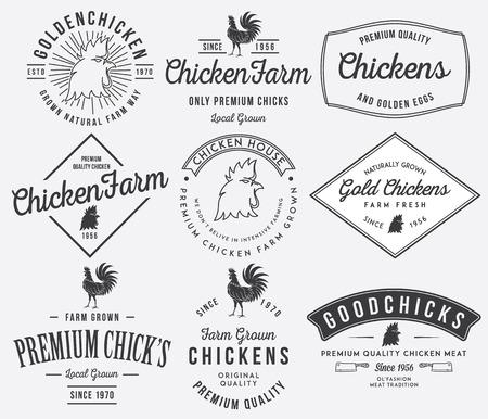 carne de pollo: Insignias pollo de primera calidad Vector y etiquetas para cualquier uso Vectores
