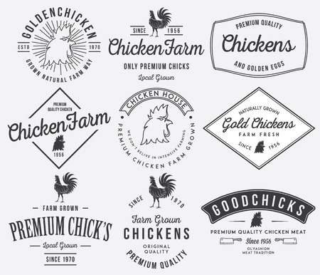 Vector quality chicken badges and labels for any use Ilustração