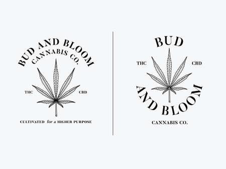 Sativa leaf bud and bloom vector graphic design black on white background Illustration
