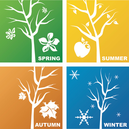 season: Four seasons representation Illustration