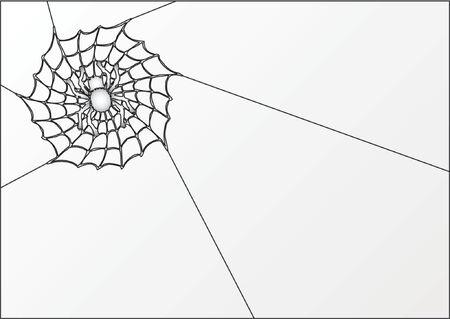 arachnoid: Ragno e ragnatela Vettoriali