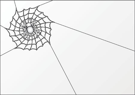 arachnids: Spider and cobweb