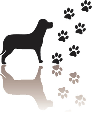 Dog and paws silhouettes