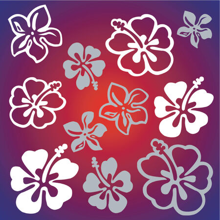 Flower pattern Illustration