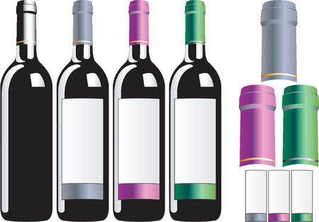 Bottles of wine Illustration