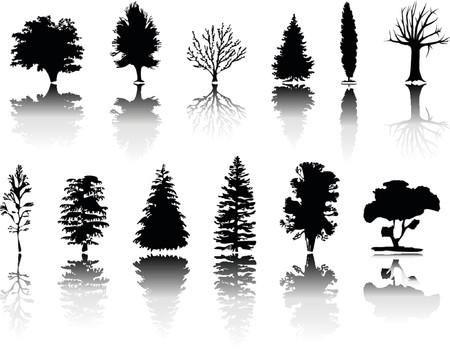 Verschiedene Arten von Bäumen Silhouetten
