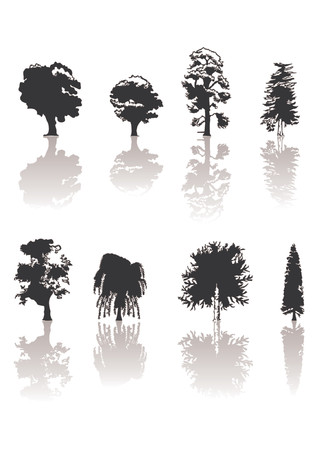 Distintos tipos de siluetas de árboles