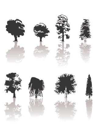 bomen zwart wit: Verschillende silhouetten bomen