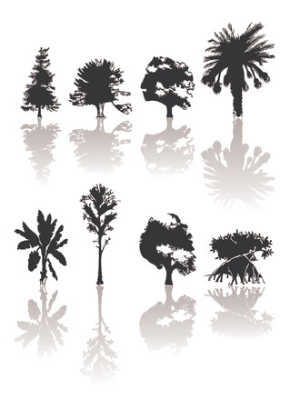 종류: Different kind of silhouettes trees