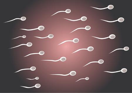 semen: Spermatozoids rappresentanza di pi� di nero e rosa radiale gradiente di sfondo  Vettoriali