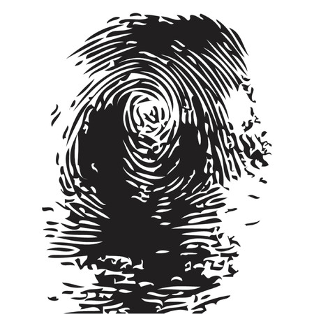 Representation of a fingerprint in vectorial shape over white background Vector