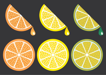 Orange lemon and lime slices over black background. The background is in a different layer. Vector