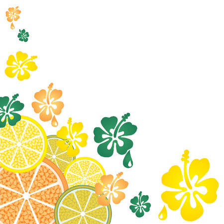 Orange lemon and lime slices with some flowers pattern over white background