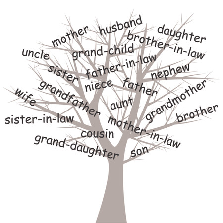 genealogical: Estilizado �rbol geneal�gico sobre fondo blanco