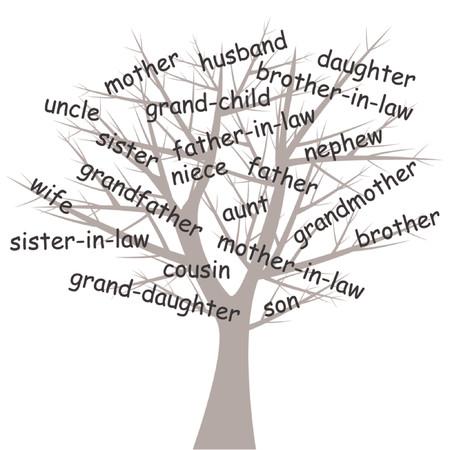 genealogical: Stylized genealogical tree over white background Illustration