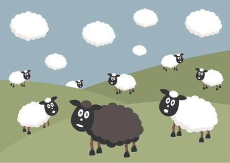 flock of sheep: Flock of sheep with the black sheep of the