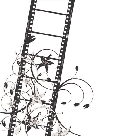 Film strip with flowers over white background Vector