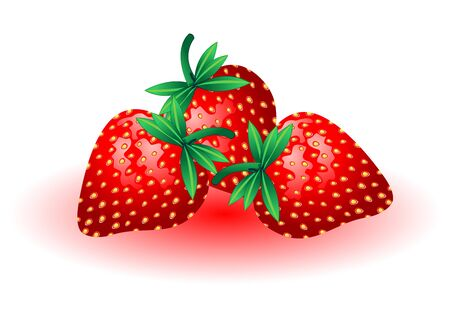 Fresh and tasty strawberries isolated over white background Vector