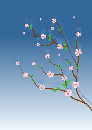 Almond tree with pink flowers over gradient blue sky photo