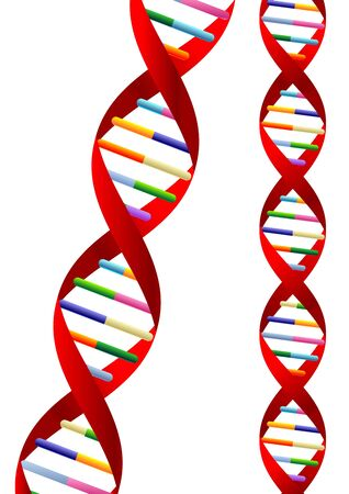 DNA helix representation isolated over white background photo