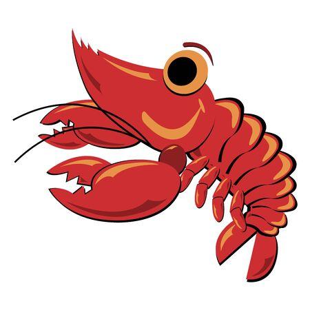 Seafood. Shellfish. Shrimp illustration isolated over white. illustration