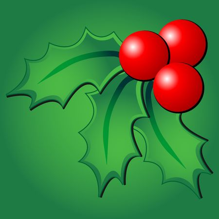 Christmas holly ornament over green square background photo