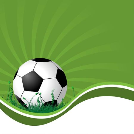 Soccer ball on the grass over starry background Vector