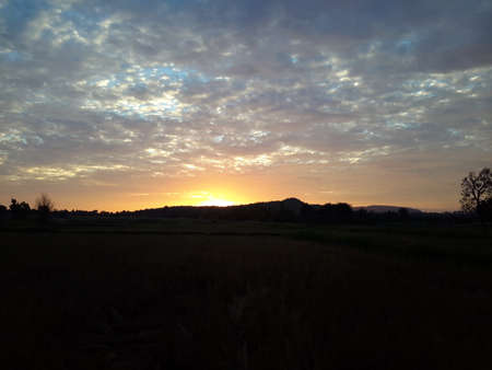 daylight: The daylight