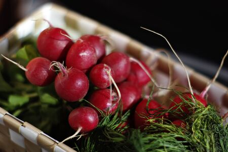 Basket with fresh small red radishes and dill against blurred background.