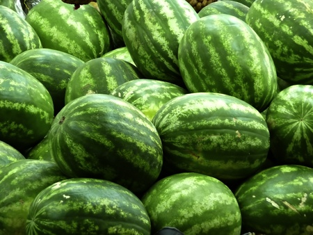 Fresh watermelons at shop stand at local green market. Stock Photo