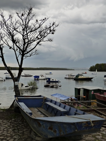 Old fishing boat at river bank, leafless tree in background, cloudy sky before storm  photo