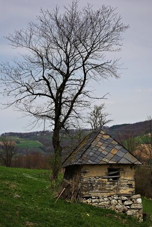 Abandoned old mountain cabin and leafless tree against stormy cloudy sky Stock Photo - 16999931