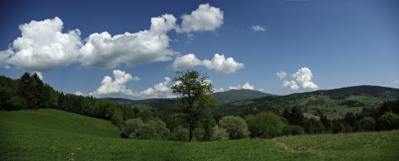 Panoramic view of highlands landscape with cloudy sky, green grass and woods at sunny summer day  photo