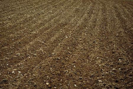 furrows: The furrows in the field of arable land ready for spring planting.