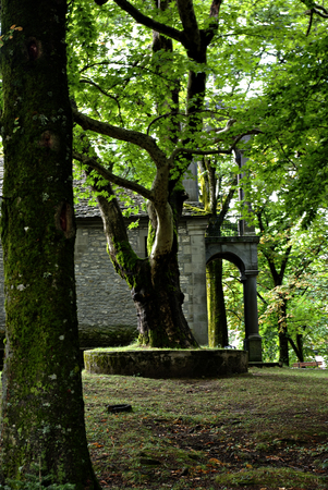 Orthodox church of St. George at Metsovo, Greece, hidden in deep woods.