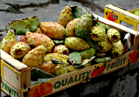 Prickly pear, cactus fruit, ready for selling in crate. Stock Photo