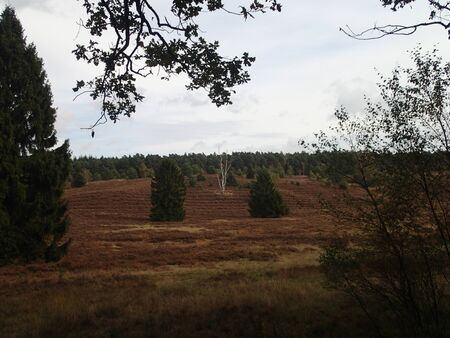 heathen: heathen in autumns