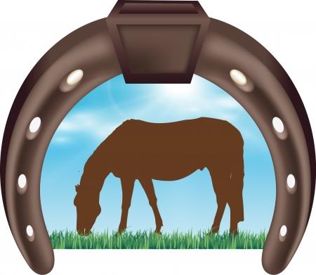 brown horse: Illustration of Handsome brown horse Illustration